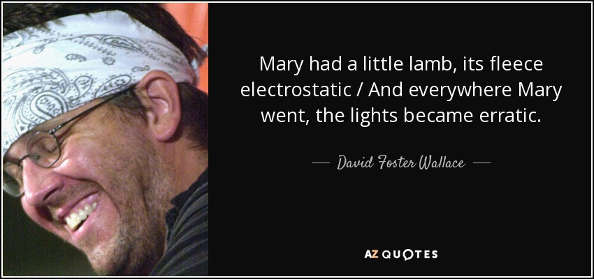 Mary had a little lamb, its fleece electrostatic / And everywhere Mary went, the lights became erratic. - David Foster Wallace