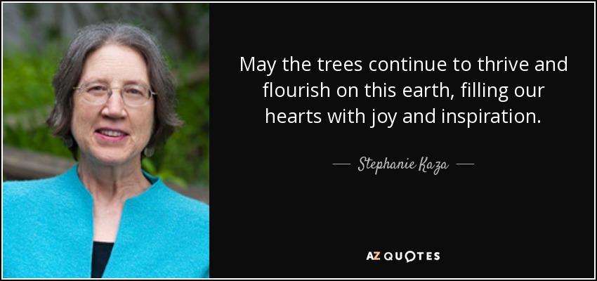 May the trees continue to thrive and flourish on this earth, filling our hearts with joy and inspiration. - Stephanie Kaza