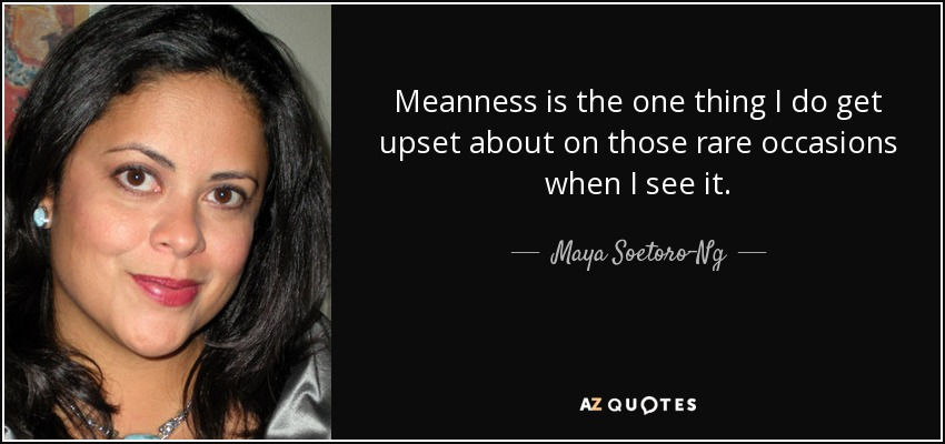 Meanness is the one thing I do get upset about on those rare occasions when I see it. - Maya Soetoro-Ng