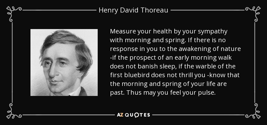 Measure your health by your sympathy with morning and spring. If there is no response in you to the awakening of nature -if the prospect of an early morning walk does not banish sleep, if the warble of the first bluebird does not thrill you -know that the morning and spring of your life are past. Thus may you feel your pulse. - Henry David Thoreau