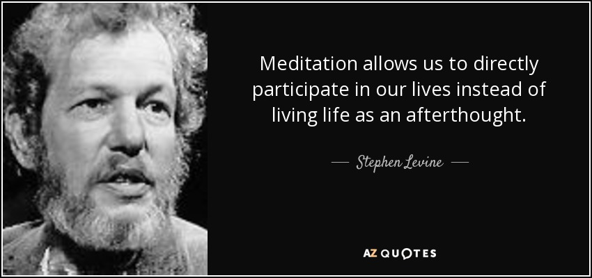 Meditation allows us to directly participate in our lives instead of living life as an afterthought. - Stephen Levine