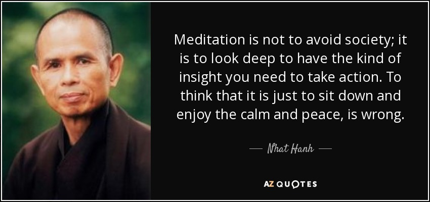 Meditation is not to avoid society; it is to look deep to have the kind of insight you need to take action. To think that it is just to sit down and enjoy the calm and peace, is wrong. - Nhat Hanh