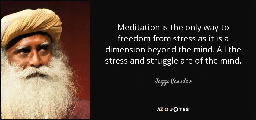 Meditation is the only way to freedom from stress as it is a dimension beyond the mind. All the stress and struggle are of the mind. - Jaggi Vasudev
