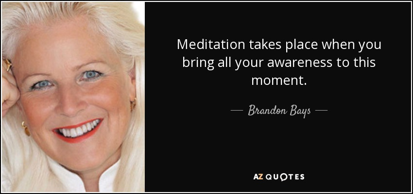 Meditation takes place when you bring all your awareness to this moment. - Brandon Bays