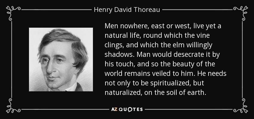 Men nowhere, east or west, live yet a natural life, round which the vine clings, and which the elm willingly shadows. Man would desecrate it by his touch, and so the beauty of the world remains veiled to him. He needs not only to be spiritualized, but naturalized, on the soil of earth. - Henry David Thoreau