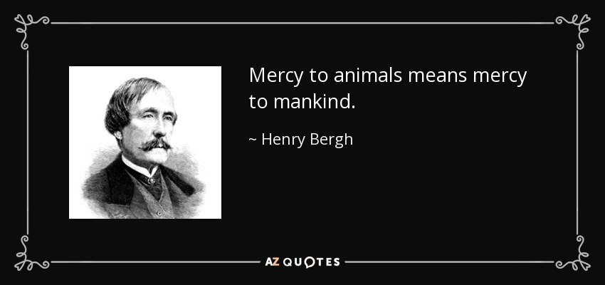 Mercy to animals means mercy to mankind. - Henry Bergh