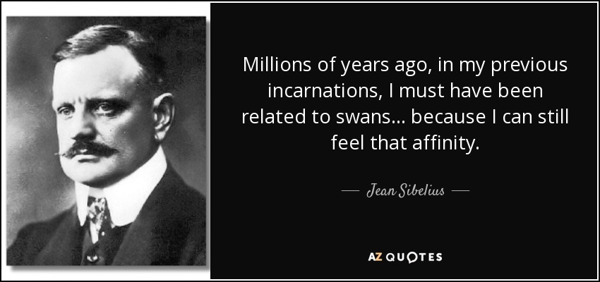 Millions of years ago, in my previous incarnations, I must have been related to swans... because I can still feel that affinity. - Jean Sibelius