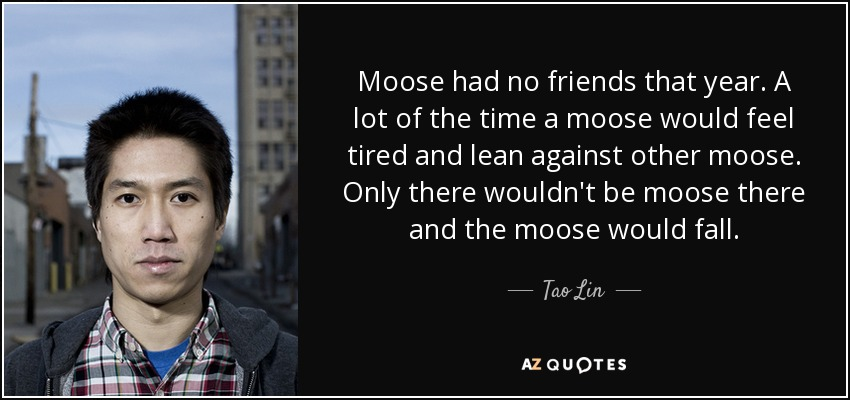 Moose had no friends that year. A lot of the time a moose would feel tired and lean against other moose. Only there wouldn't be moose there and the moose would fall. - Tao Lin