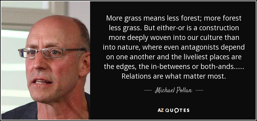 More grass means less forest; more forest less grass. But either-or is a construction more deeply woven into our culture than into nature, where even antagonists depend on one another and the liveliest places are the edges, the in-betweens or both-ands..... Relations are what matter most. - Michael Pollan