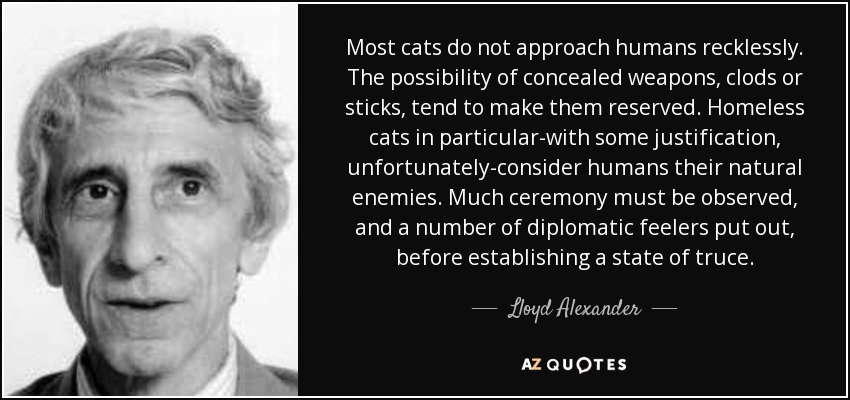 Most cats do not approach humans recklessly. The possibility of concealed weapons, clods or sticks, tend to make them reserved. Homeless cats in particular-with some justification, unfortunately-consider humans their natural enemies. Much ceremony must be observed, and a number of diplomatic feelers put out, before establishing a state of truce. - Lloyd Alexander