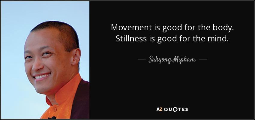 Movement is good for the body. Stillness is good for the mind. - Sakyong Mipham