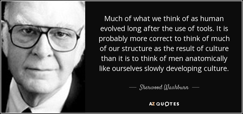 Much of what we think of as human evolved long after the use of tools. It is probably more correct to think of much of our structure as the result of culture than it is to think of men anatomically like ourselves slowly developing culture. - Sherwood Washburn