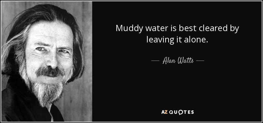 Muddy water is best cleared by leaving it alone. - Alan Watts