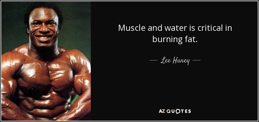 Muscle and water is critical in burning fat. - Lee Haney