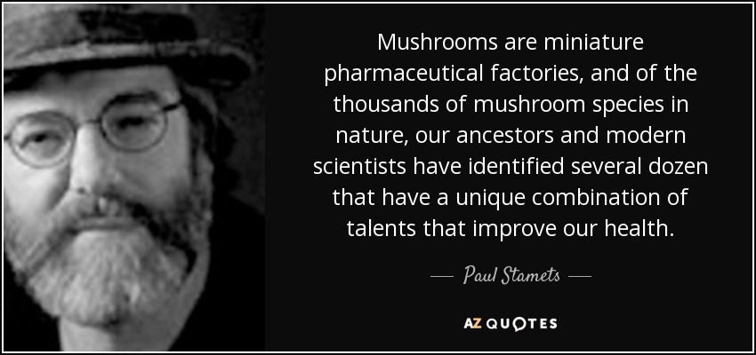 Mushrooms are miniature pharmaceutical factories, and of the thousands of mushroom species in nature, our ancestors and modern scientists have identified several dozen that have a unique combination of talents that improve our health. - Paul Stamets