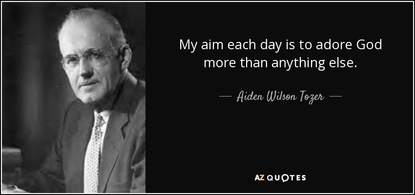 My aim each day is to adore God more than anything else. - Aiden Wilson Tozer