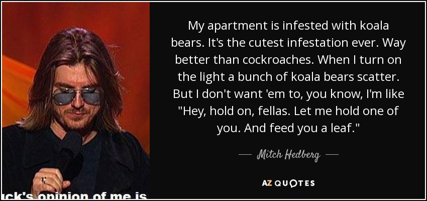 My apartment is infested with koala bears. It's the cutest infestation ever. Way better than cockroaches. When I turn on the light a bunch of koala bears scatter. But I don't want 'em to, you know, I'm like