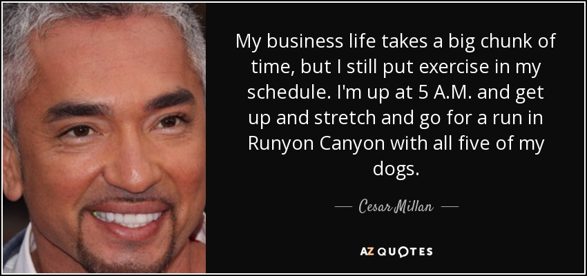 My business life takes a big chunk of time, but I still put exercise in my schedule. I'm up at 5 A.M. and get up and stretch and go for a run in Runyon Canyon with all five of my dogs. - Cesar Millan