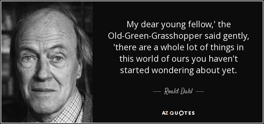 My dear young fellow,' the Old-Green-Grasshopper said gently, 'there are a whole lot of things in this world of ours you haven't started wondering about yet. - Roald Dahl