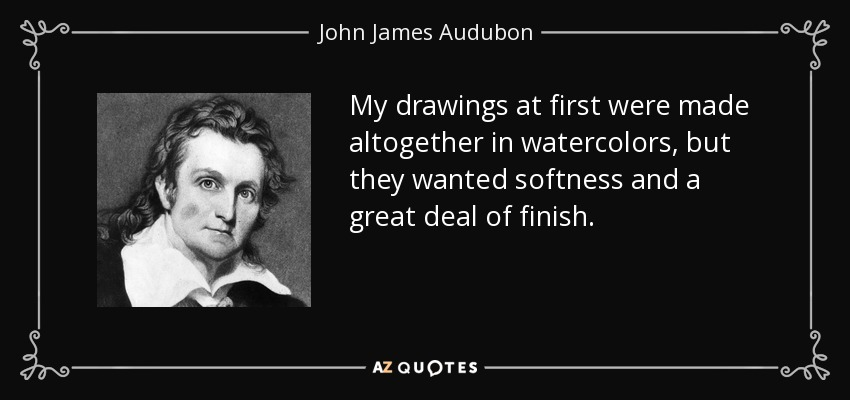 My drawings at first were made altogether in watercolors, but they wanted softness and a great deal of finish. - John James Audubon