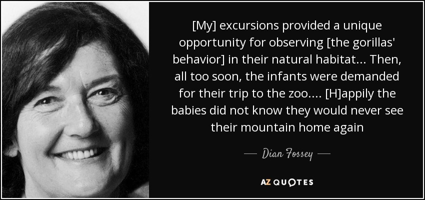 [My] excursions provided a unique opportunity for observing [the gorillas' behavior] in their natural habitat... Then, all too soon, the infants were demanded for their trip to the zoo. ... [H]appily the babies did not know they would never see their mountain home again - Dian Fossey