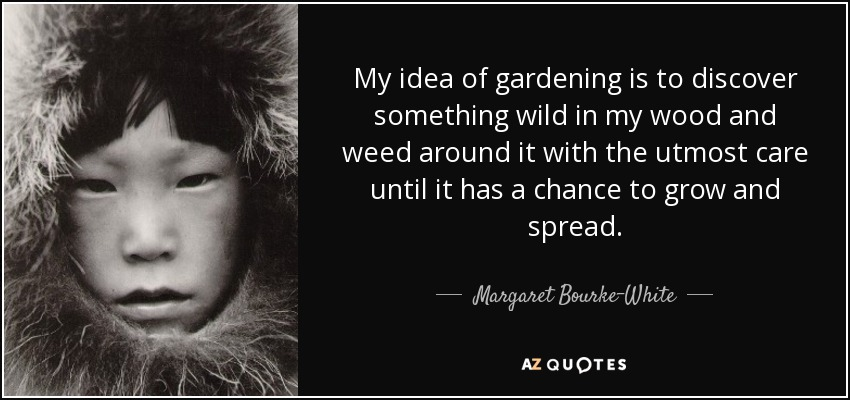 My idea of gardening is to discover something wild in my wood and weed around it with the utmost care until it has a chance to grow and spread. - Margaret Bourke-White