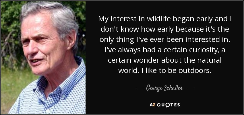My interest in wildlife began early and I don't know how early because it's the only thing I've ever been interested in. I've always had a certain curiosity, a certain wonder about the natural world. I like to be outdoors. - George Schaller