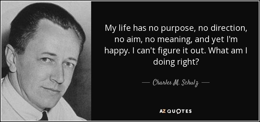 My life has no purpose, no direction, no aim, no meaning, and yet I'm happy. I can't figure it out. What am I doing right? - Charles M. Schulz