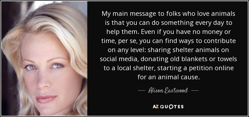 My main message to folks who love animals is that you can do something every day to help them. Even if you have no money or time, per se, you can find ways to contribute on any level: sharing shelter animals on social media, donating old blankets or towels to a local shelter, starting a petition online for an animal cause. - Alison Eastwood