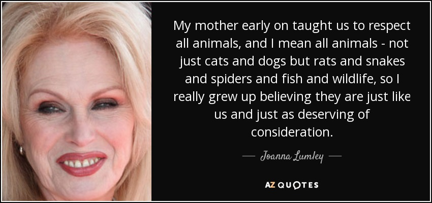 Image result for respect animals quotes