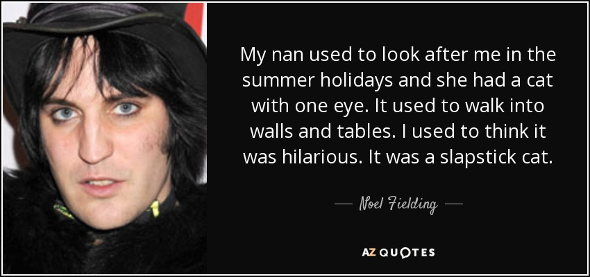 My nan used to look after me in the summer holidays and she had a cat with one eye. It used to walk into walls and tables. I used to think it was hilarious. It was a slapstick cat. - Noel Fielding