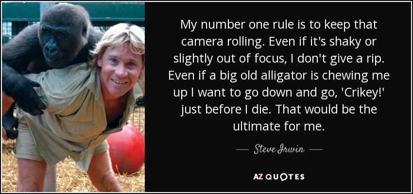 My number one rule is to keep that camera rolling. Even if it's shaky or slightly out of focus, I don't give a rip. Even if a big old alligator is chewing me up I want to go down and go, 'Crikey!' just before I die. That would be the ultimate for me. - Steve Irwin