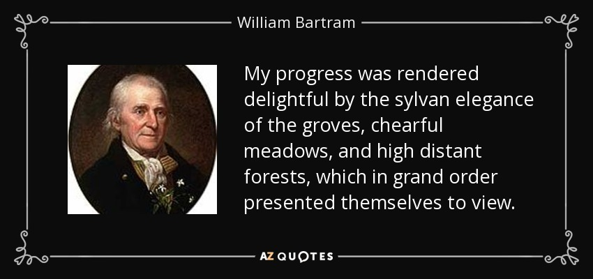 My progress was rendered delightful by the sylvan elegance of the groves, chearful meadows, and high distant forests, which in grand order presented themselves to view. - William Bartram