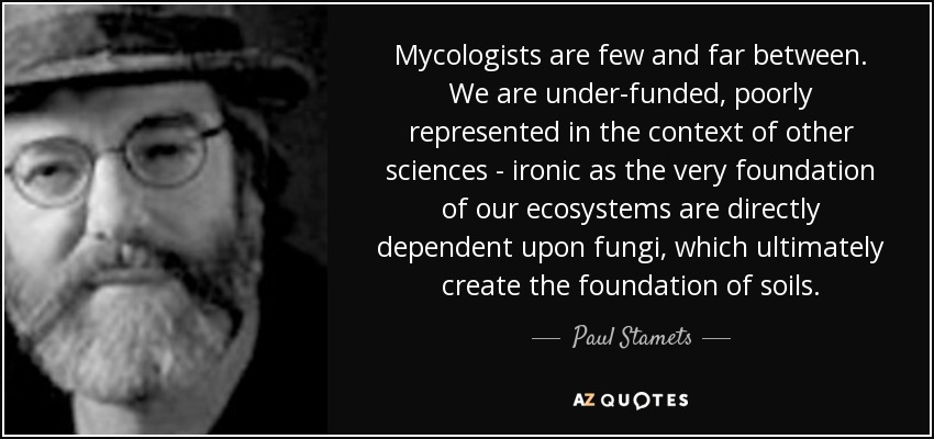 Mycologists are few and far between. We are under-funded, poorly represented in the context of other sciences - ironic as the very foundation of our ecosystems are directly dependent upon fungi, which ultimately create the foundation of soils. - Paul Stamets