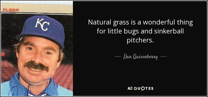 Natural grass is a wonderful thing for little bugs and sinkerball pitchers. - Dan Quisenberry