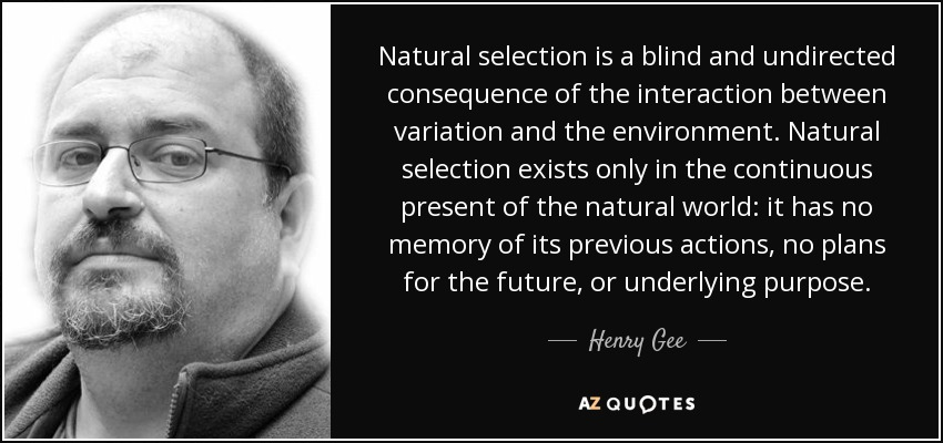 Natural selection is a blind and undirected consequence of the interaction between variation and the environment. Natural selection exists only in the continuous present of the natural world: it has no memory of its previous actions, no plans for the future, or underlying purpose. - Henry Gee