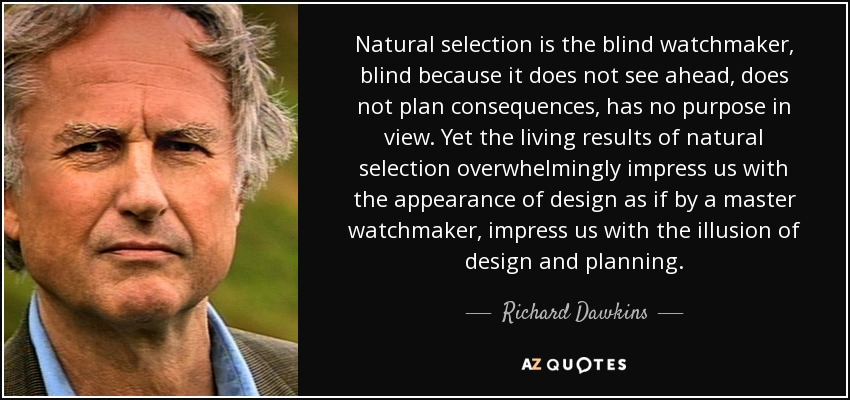 Natural selection is the blind watchmaker, blind because it does not see ahead, does not plan consequences, has no purpose in view. Yet the living results of natural selection overwhelmingly impress us with the appearance of design as if by a master watchmaker, impress us with the illusion of design and planning. - Richard Dawkins