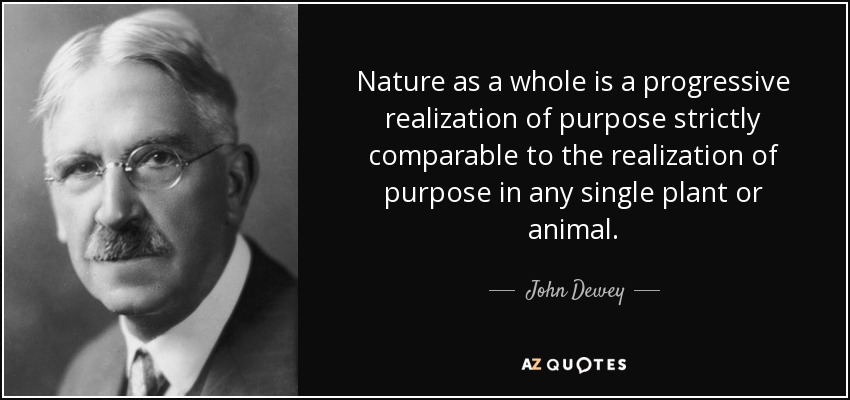 Nature as a whole is a progressive realization of purpose strictly comparable to the realization of purpose in any single plant or animal. - John Dewey