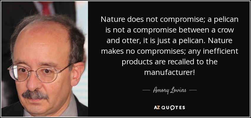 Nature does not compromise; a pelican is not a compromise between a crow and otter, it is just a pelican. Nature makes no compromises; any inefficient products are recalled to the manufacturer! - Amory Lovins
