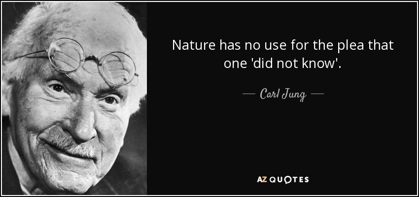 Nature has no use for the plea that one 'did not know'. - Carl Jung