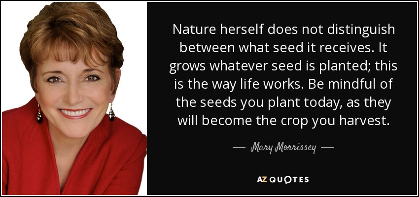 Nature herself does not distinguish between what seed it receives. It grows whatever seed is planted; this is the way life works. Be mindful of the seeds you plant today, as they will become the crop you harvest. - Mary Morrissey