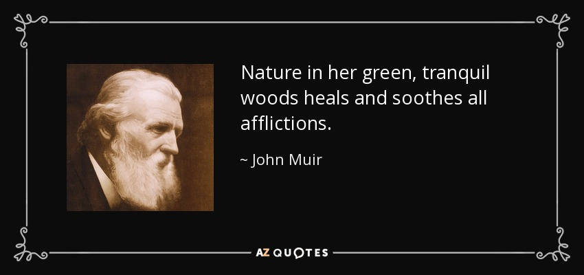 Nature in her green, tranquil woods heals and soothes all afflictions. - John Muir