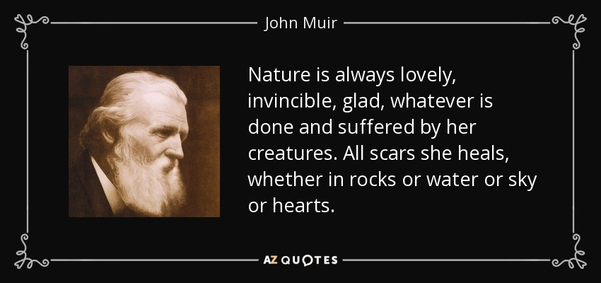 Nature is always lovely, invincible, glad, whatever is done and suffered by her creatures. All scars she heals, whether in rocks or water or sky or hearts. - John Muir
