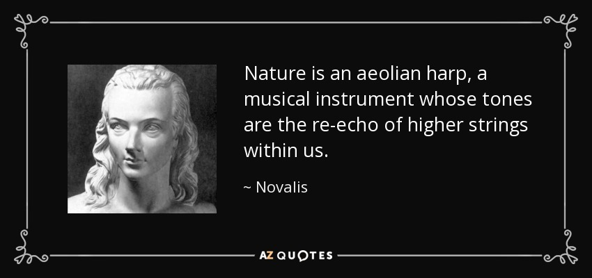 Nature is an aeolian harp, a musical instrument whose tones are the re-echo of higher strings within us. - Novalis