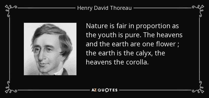 Nature is fair in proportion as the youth is pure. The heavens and the earth are one flower ; the earth is the calyx, the heavens the corolla. - Henry David Thoreau