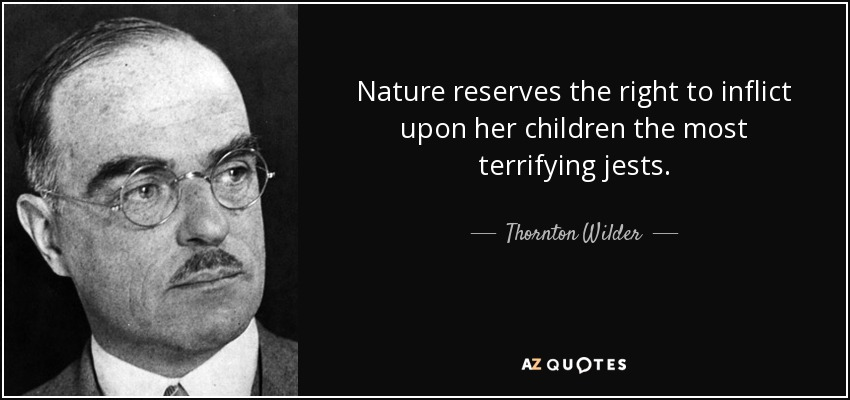 Nature reserves the right to inflict upon her children the most terrifying jests. - Thornton Wilder