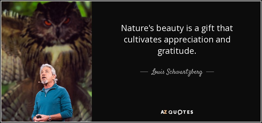 Louis Schwartzberg Quote Nature S Beauty Is A Gift That Cultivates