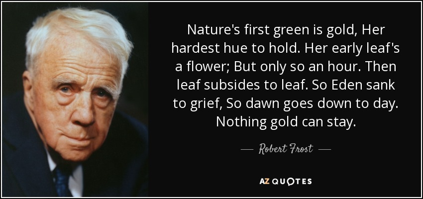 Nature's first green is gold, Her hardest hue to hold. Her early leaf's a flower; But only so an hour. Then leaf subsides to leaf. So Eden sank to grief, So dawn goes down to day. Nothing gold can stay. - Robert Frost