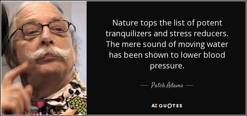 Nature tops the list of potent tranquilizers and stress reducers. The mere sound of moving water has been shown to lower blood pressure. - Patch Adams