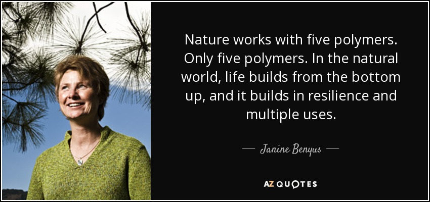 Nature works with five polymers. Only five polymers. In the natural world, life builds from the bottom up, and it builds in resilience and multiple uses. - Janine Benyus